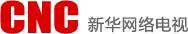 新华网络电视台